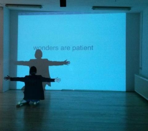 wonders are patient smallest